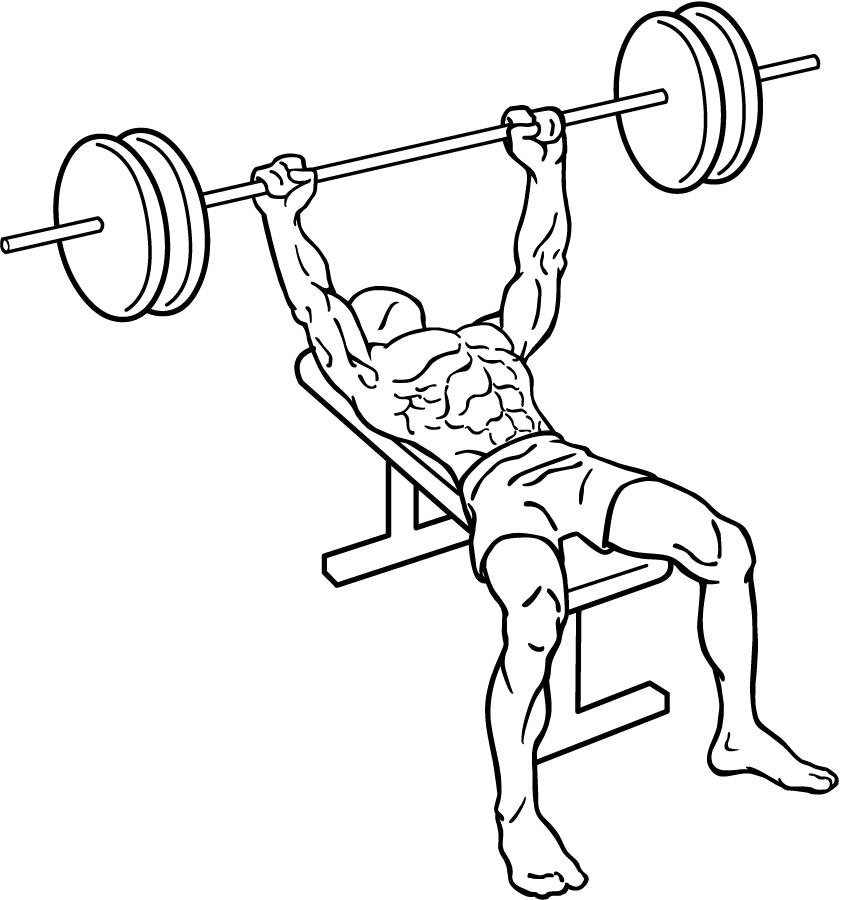 Bench press position 1