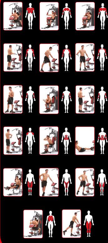 Sportstech HGX100 Exercises
